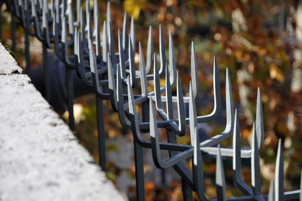 grey metal spikes on a fence